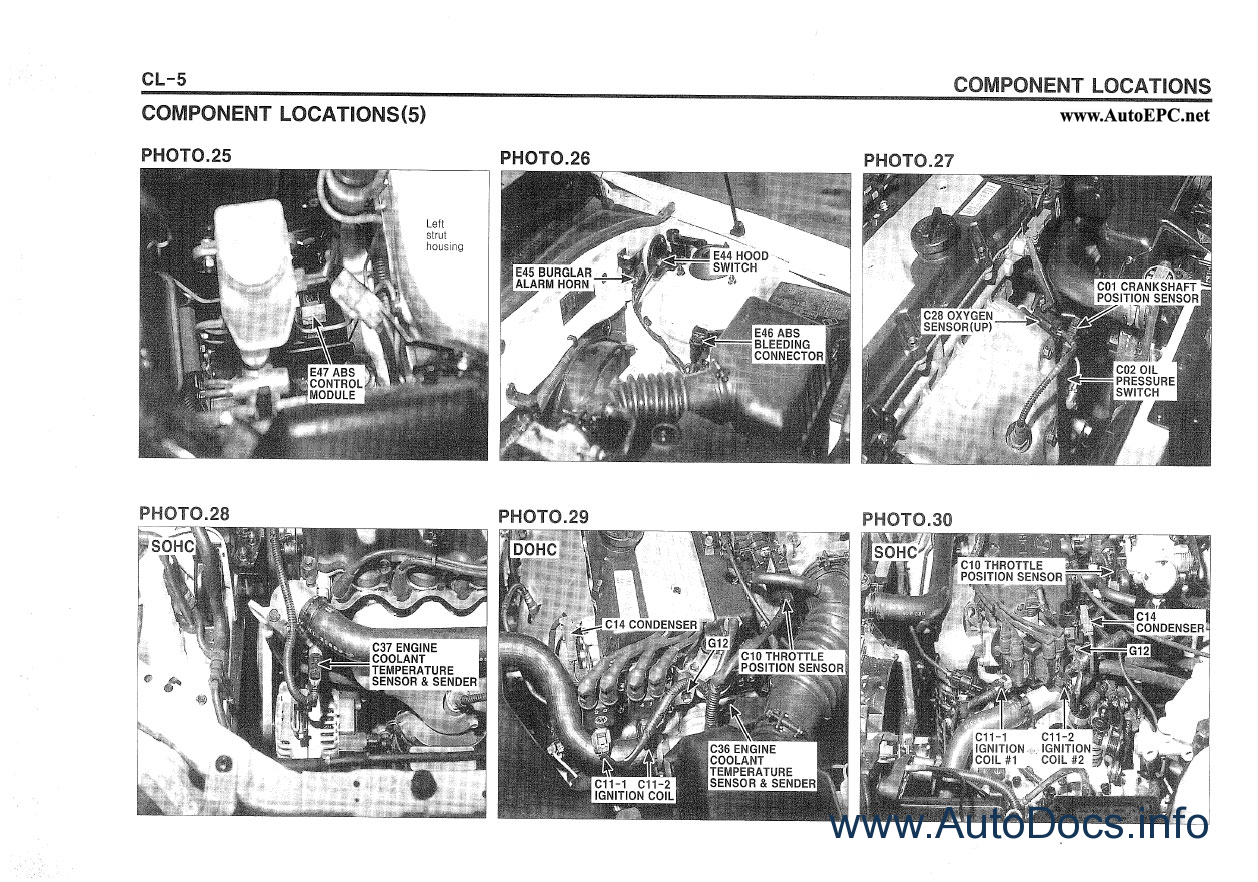 hyundai terracan repair manual order  u0026 download
